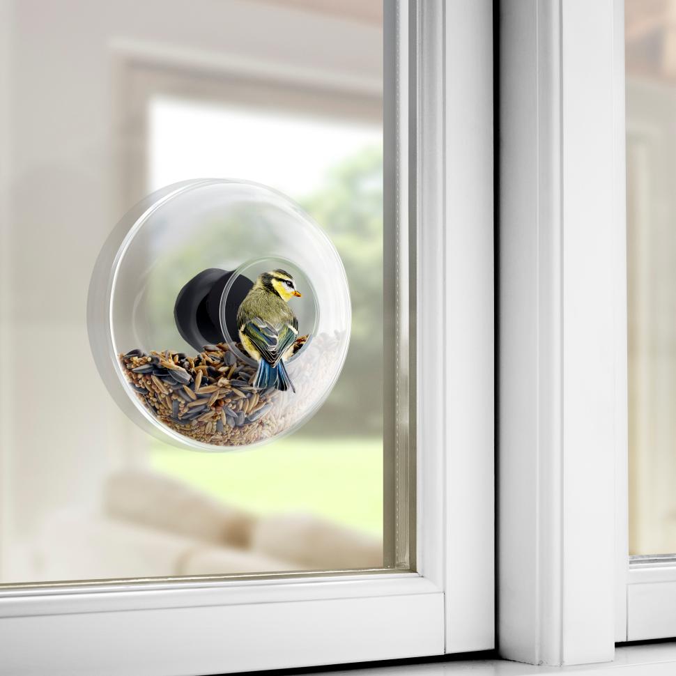 fågelmatare för fönster