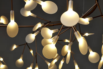 Moooi-Heracleum the Big O - Takkrona